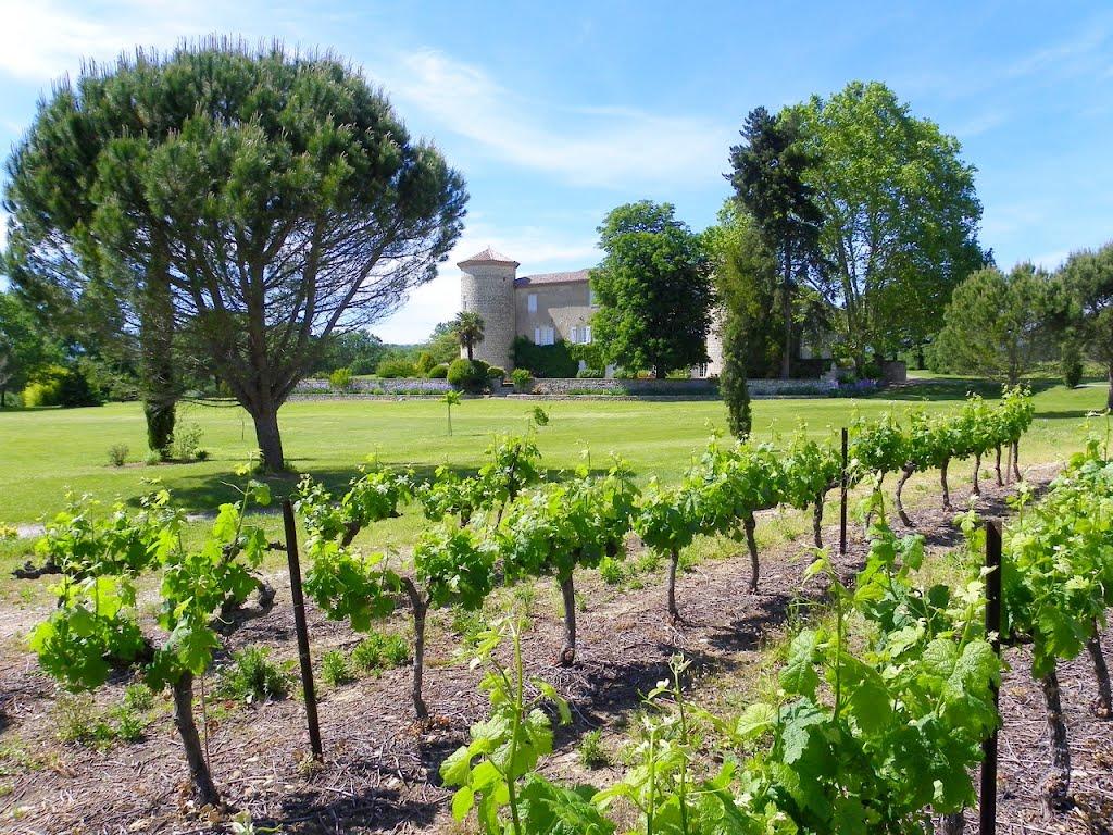Wijn - Chateau de la Selve - Ardechefriends
