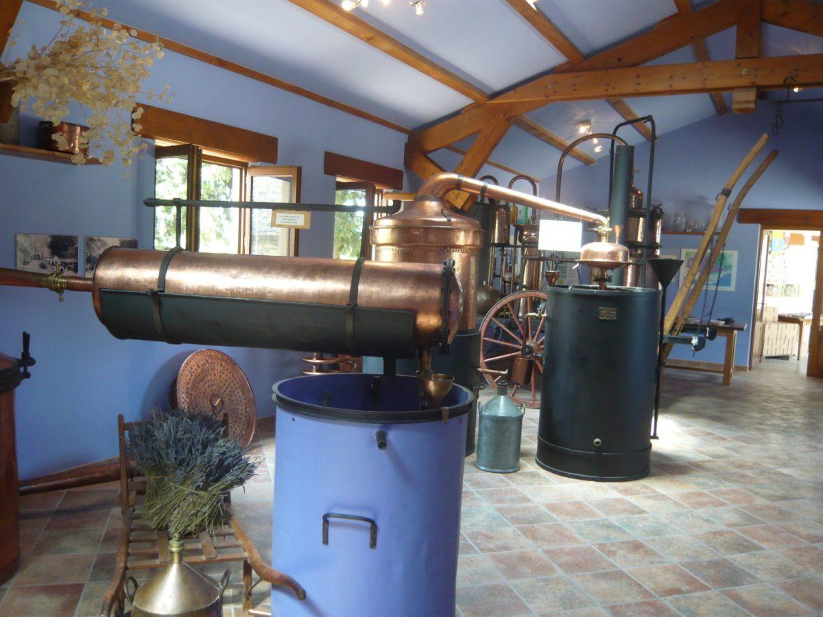 Lavendelmuseum Saint-Remèze - Lavendel - Ardechefriends.com